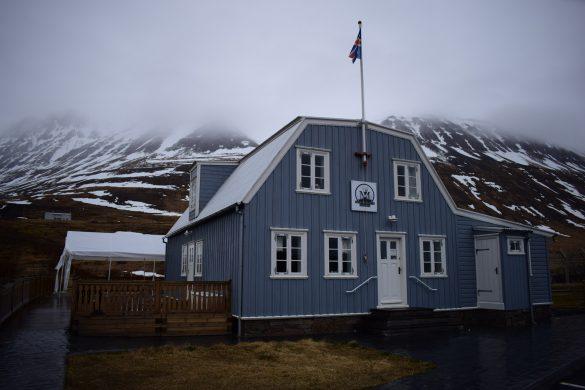 Arctic fox centre